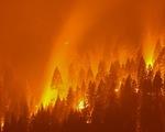 Đám cháy rừng lớn nhất ở Mỹ đe dọa bang California