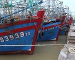 Đã tìm thấy 3 tàu cá của ngư dân Thanh Hóa mất liên lạc khi vào bờ tránh bão