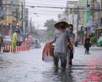 Mưa ngập nội thành, người dân Đà Nẵng nô nức ra đường bắt cá để giải trí