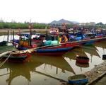 Ngư dân đưa thuyền vào bờ, nông dân xuống đồng gặt lúa