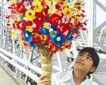 Làm hoa giấy ở làng Thanh Tiên
