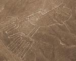 Nền văn minh Nazca diệt vong vì phá rừng