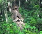 Phát hiện bộ tộc người cổ đại mới ở Amazon
