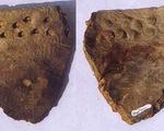 Mảnh gốm thay đổi lịch sử phát triển loài người