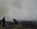Cháy bãi cỏ, khói mù mịt bao trùm khu dân cư