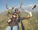 Du lịch dù lượn trên không cùng kền kền ở Nepal