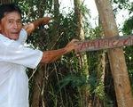 Sai phạm đất rừng U Minh Hạ: Chưa xử lývì lãnh đạo... bận