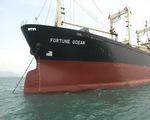 Phát hiện tàu nước ngoài neo đậu trái phép tại vùng biển BR-VT