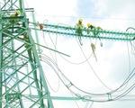 Những người chăm sóc  cột điện, đường dây