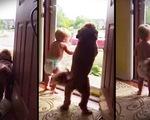 'Tan chảy' với clip em bé và chú chó chào đóncha