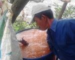 Bơm nước nhiễm phèn nặng cho dân xài