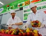 Cà chua, cà rốt, dưa leo... tí hon Việt xông ra chợ tết