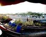 Thương hồ trên Bến Bình Đông