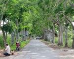 Công nhận Khu Ramsar Vườn Quốc gia U Minh Thượng