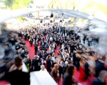cannes-overview-1463666819.jpg