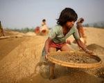 Mỹ tài trợ 8 triệu USD để phòng ngừa lao động trẻ em ở Việt Nam
