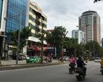 Hà Nội trồng nhiều phượng: Công ty cây xanh nói 'không ngại'