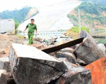 Thôi chức hạt trưởng, hạt phó Hạt kiểm lâm huyện Bảo Lâm