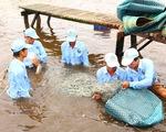 Tăng mức phạt với vi phạm trong lĩnh vực thủy sản