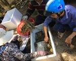 Phú Yên họp báo vụ tôm hùm chết hàng loạt