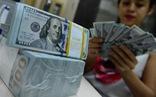 Ngân hàng Nhà nước bất ngờ tăng giá mua USD