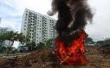 Đốt rác giữa chung cư, khói đen bay rợp trời