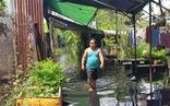 Hơn 100 hộ dân bức xúc vì làm đường khiến nước cống tràn vào nhà