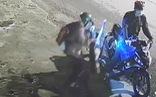 Video: Chó pitbull to khỏe bị chích điện, bồng đi mất chưa đầy 30 giây