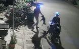 Video 'cẩu tặc' rọi đèn, chích điện trộm chó trong 15 giây