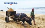 Lăng kính 24g: Nghề cầm 'vô lăng dây' có một không hai ở Việt Nam