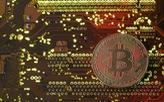 Bitcoin đã được đào hết 80%