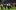 Cổ động viên Lille tấn công đội nhà sau trận gặp Montpellier