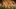Ngắm ảnh đoạt giải Sony 2018 'đẹp nín thở'