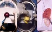 Đốn tim cư dân mạng với các video phẫu thuật trái cây