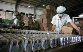 Sữa Việt bước vào thị trường Trung Quốc