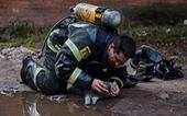 Lính PCCC giúp mèo thở oxy trong đám cháy thành 'người hùng'