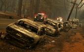 Xài cột điện gỗ cũ kỹ, công ty Mỹ phải bồi thường nặng vì gây cháy