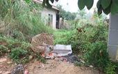 Khám nghiệm lại tử thi nữ sinh giao gà bị giết hại
