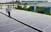 Đầu tư điện mặt trời quá thấp so với tiềm năng