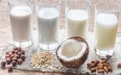 Những sản phẩm thay thế cho sữa bò tốt nhất