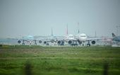 Vingroup bất ngờ dừng lập hãng hàng không Vinpearl Air