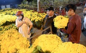 Chợ hoa không nói thách, người Sài Gòn vui vẻ mua hoa đến nửa đêm