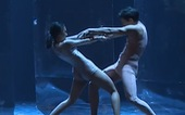 Tiết mục giải nhì cuộc thi Tài năng biểu diễn múa 2020 bị tố đạo tác phẩm nước ngoài
