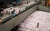 Philippines dự kiến nhập khẩu gạo lớn nhất thế giới trong năm 2020