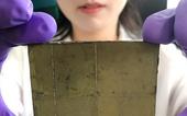 Phát minh ra thiết bị 'quang hợp nhân tạo' không cần dùng điện