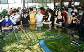 Quá tải nơi vùng lõi, đô thị sinh thái vệ tinh rộng đường bứt phá