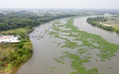 TP.HCM tính dời điểm lấy nước thô sông Sài Gòn lên Củ Chi để 'né' khu vực ô nhiễm
