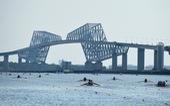 Hàu biển đe dọa điểm thi đấu quan trọng của Olympic Tokyo