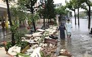 Đà Nẵng chỉ chịu nổi mưa 100mm?