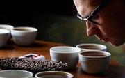 Cách nào nhận diện cà phê thiệt?